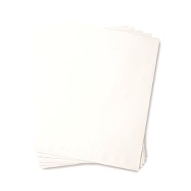 Catalogue Envelope - 24lb Recycled White 9